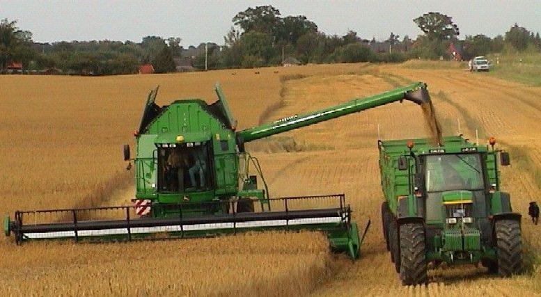 воронеж сельское хозяйство