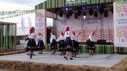 хлебный фестиваль